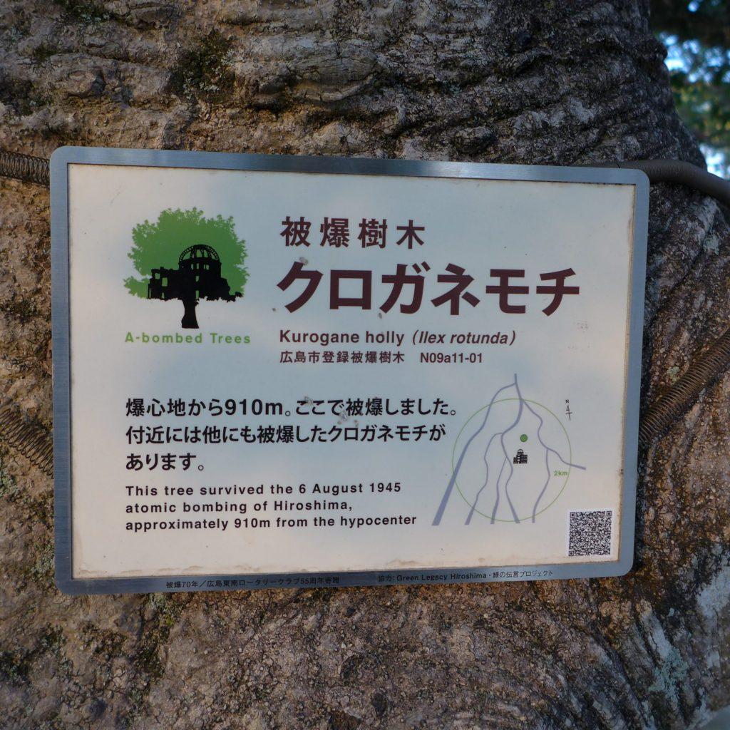 """Inscription Apposée Sur Les """"A-bombed Trees"""""""