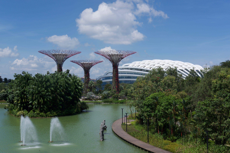 Singapour : Ville Du Futur